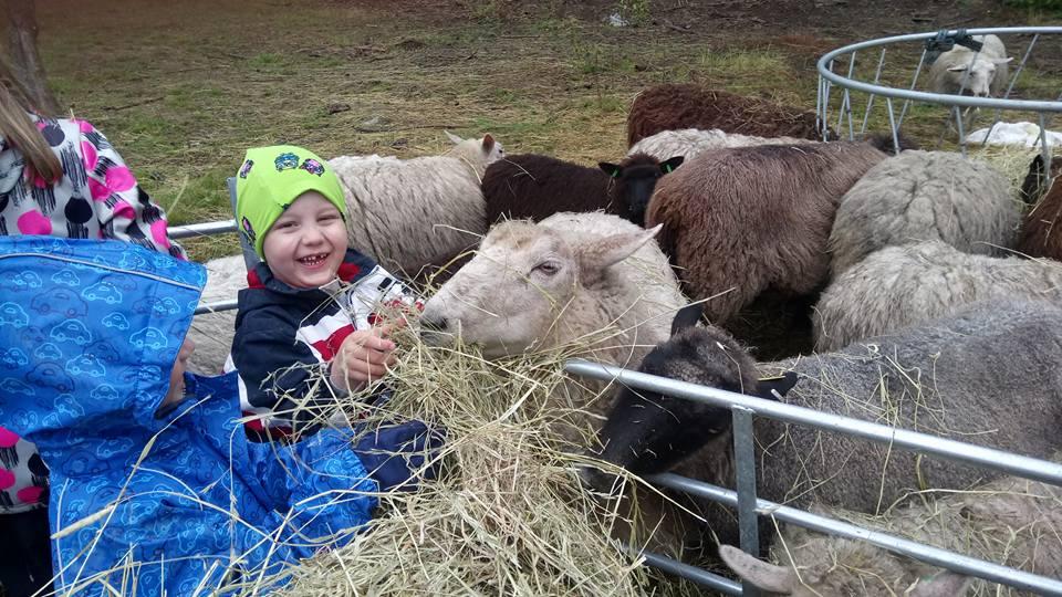 Lammastilan puuharyhmä lapsille