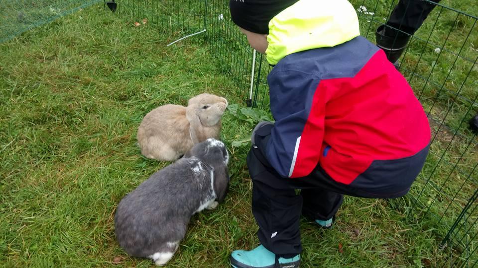 Lammastila Päiväleiri lapsille