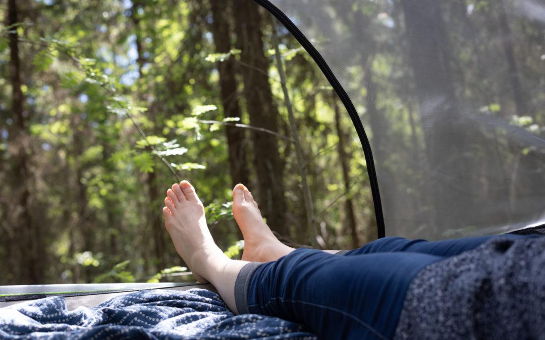 Majoittuminen teltassa Hakamaan Lammastilalla